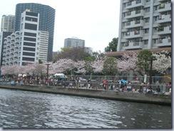 港南ふれあい桜祭り