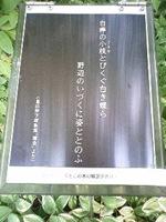 美智子様が詠われた詩